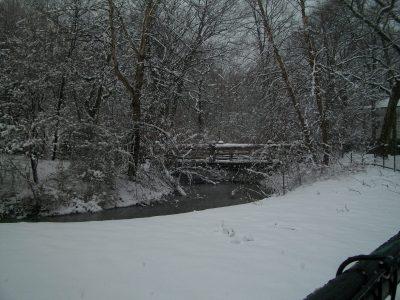 snowy Prospect Park